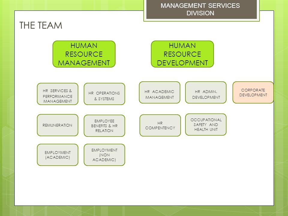 THE TEAM HUMAN RESOURCE MANAGEMENT HUMAN RESOURCE DEVELOPMENT