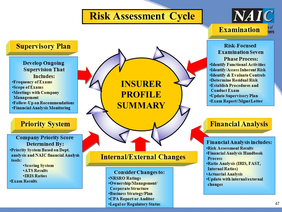 Risk Assessment Cycle INSURER PROFILE SUMMARY Examination