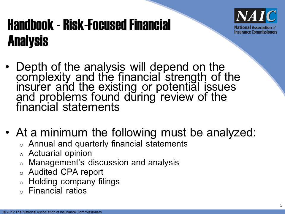Handbook - Risk-Focused Financial Analysis