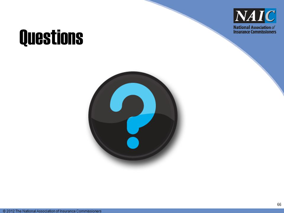 Questions © 2009 The National Association of Insurance Commissioners All Rights Reserved