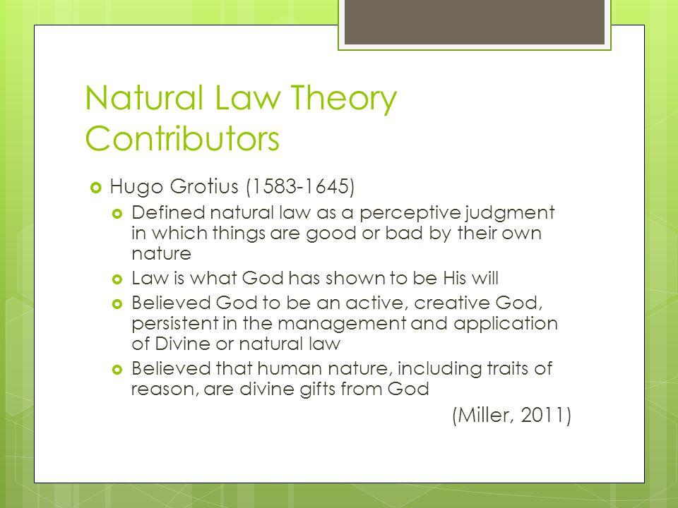 Natural Law Theory Contributors
