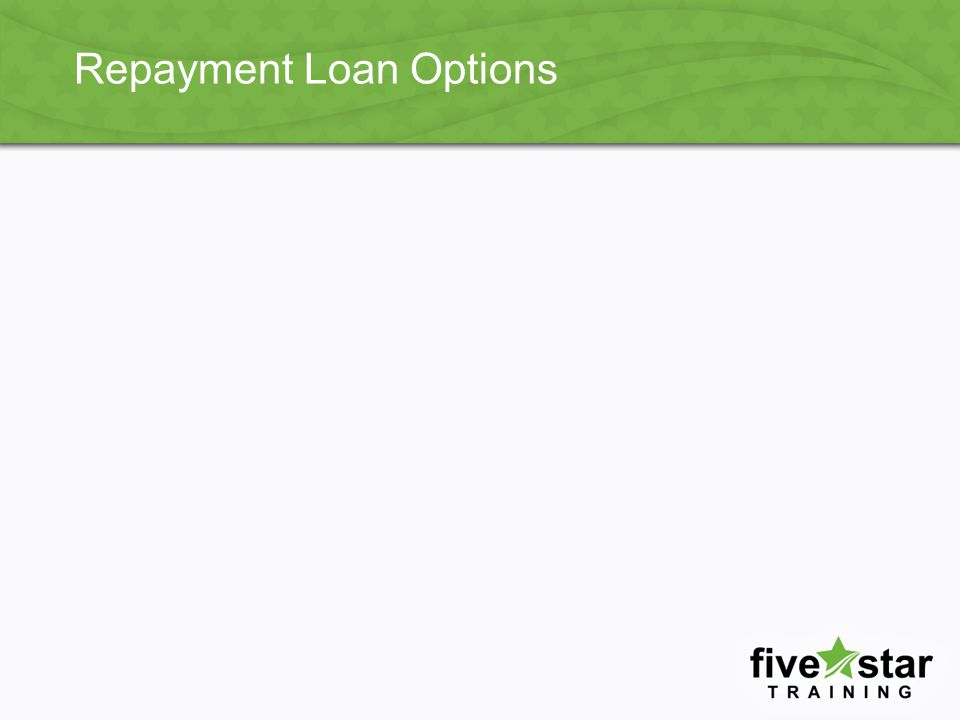 Repayment Loan Options