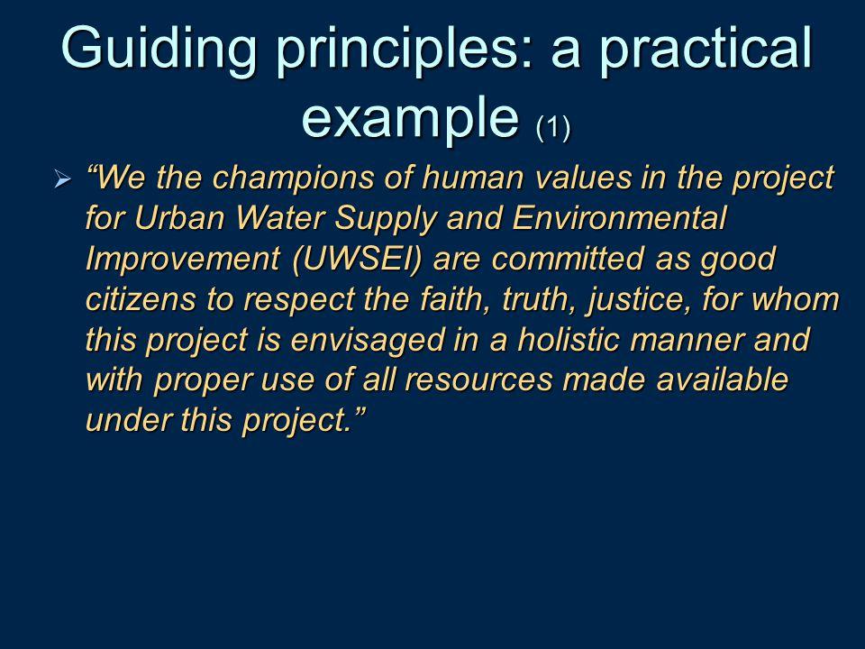 Guiding principles: a practical example (1)