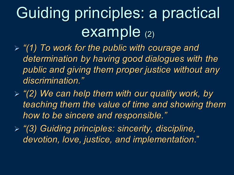 Guiding principles: a practical example (2)
