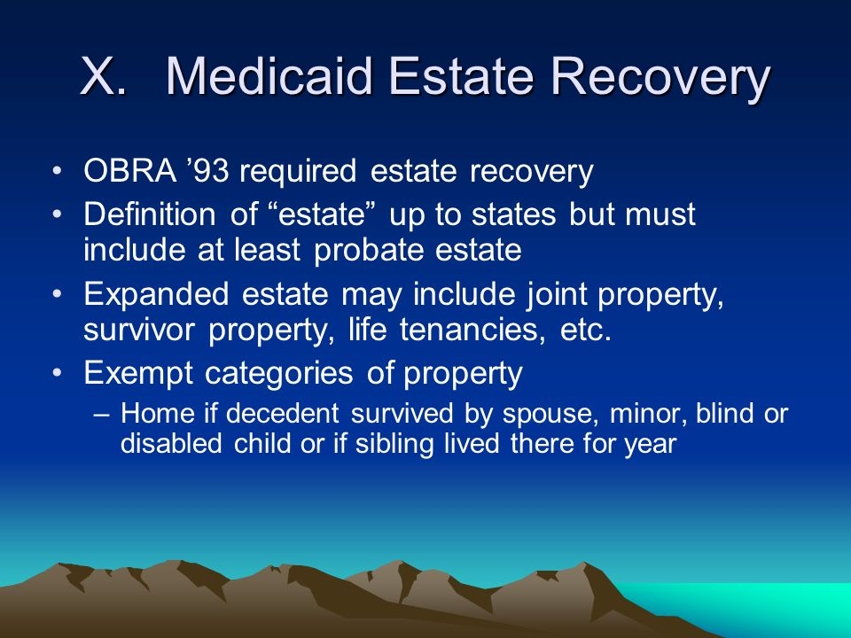 X. Medicaid Estate Recovery