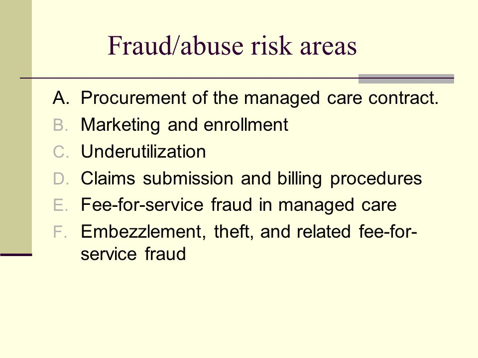 Fraud/abuse risk areas