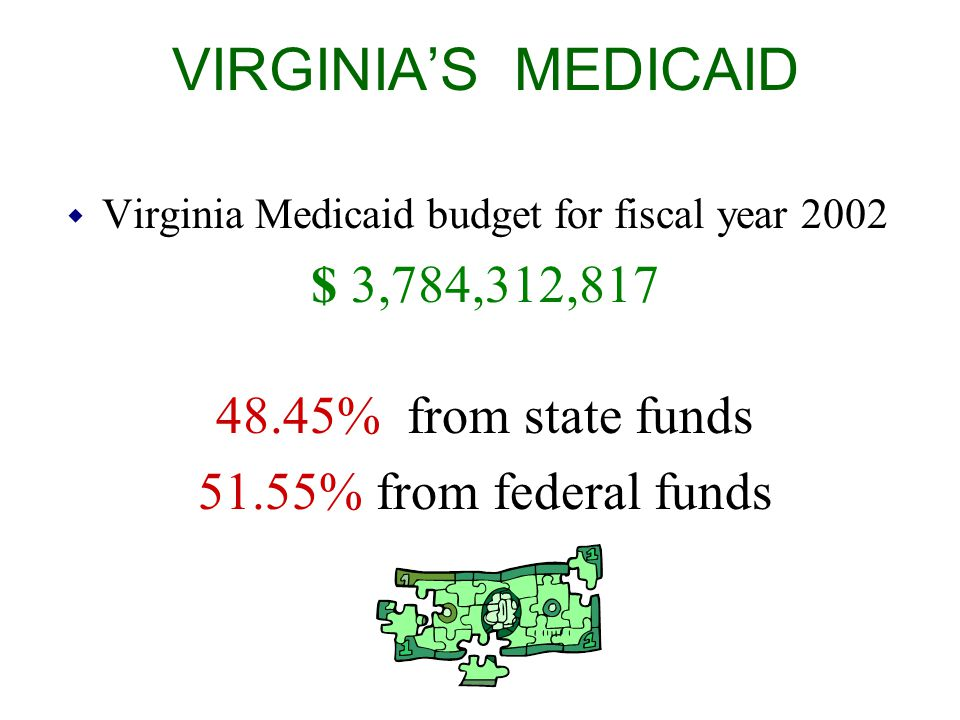 VIRGINIA'S MEDICAID $ 3,784,312,817 48.45% from state funds