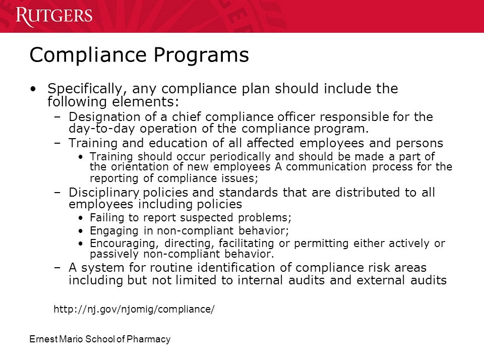 Compliance Programs Specifically, any compliance plan should include the following elements: