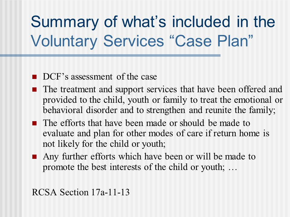 Summary of what's included in the Voluntary Services Case Plan