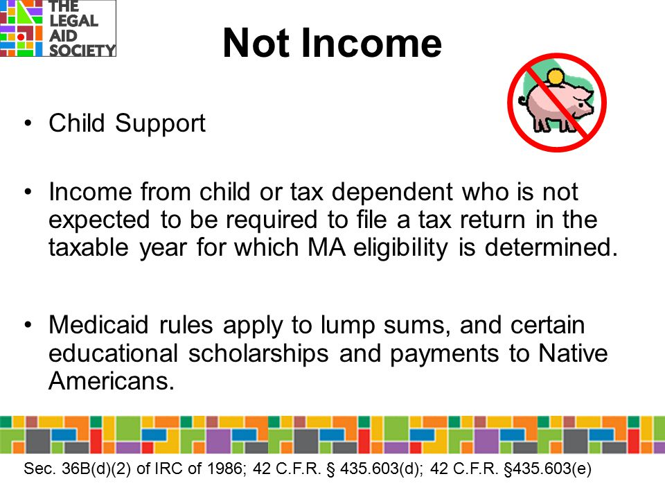 Not Income Child Support