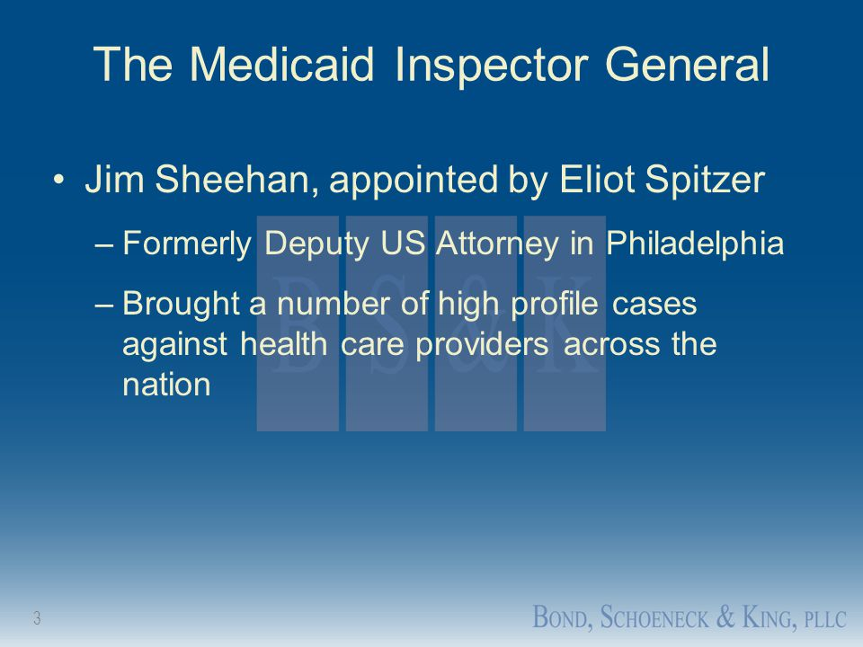 The Medicaid Inspector General
