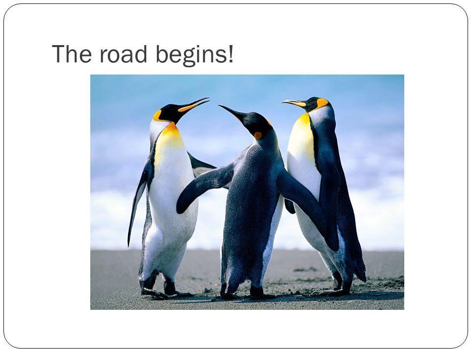 The road begins!