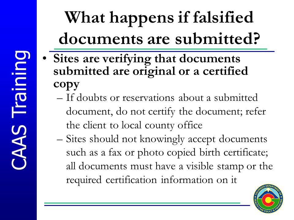 What happens if falsified documents are submitted