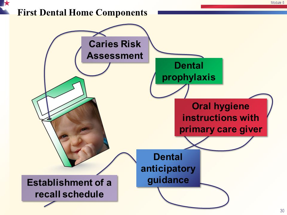 First Dental Home Components