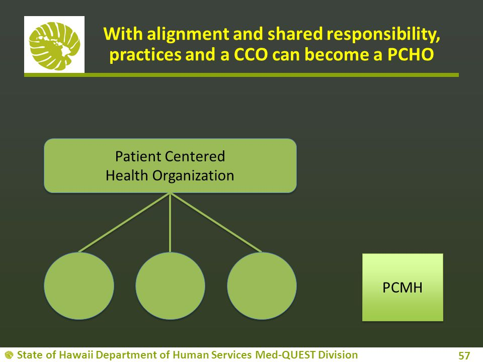 With alignment and shared responsibility, practices and a CCO can become a PCHO