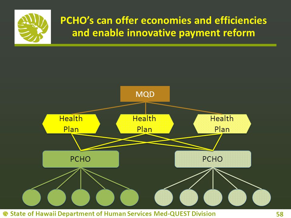 PCHO's can offer economies and efficiencies and enable innovative payment reform