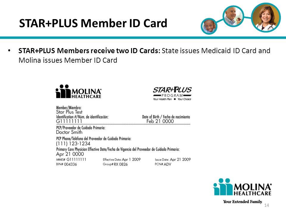 STAR+PLUS Member ID Card