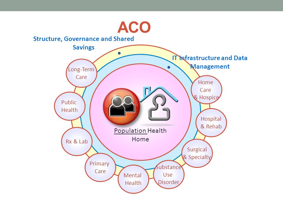 ACO Structure, Governance and Shared Savings