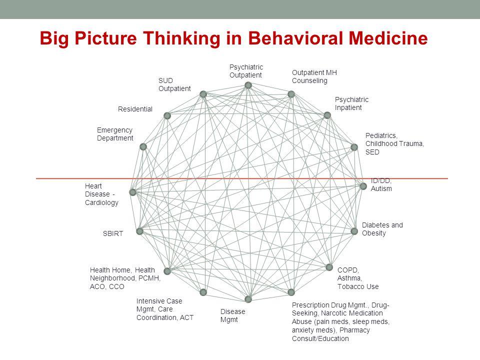 Big Picture Thinking in Behavioral Medicine