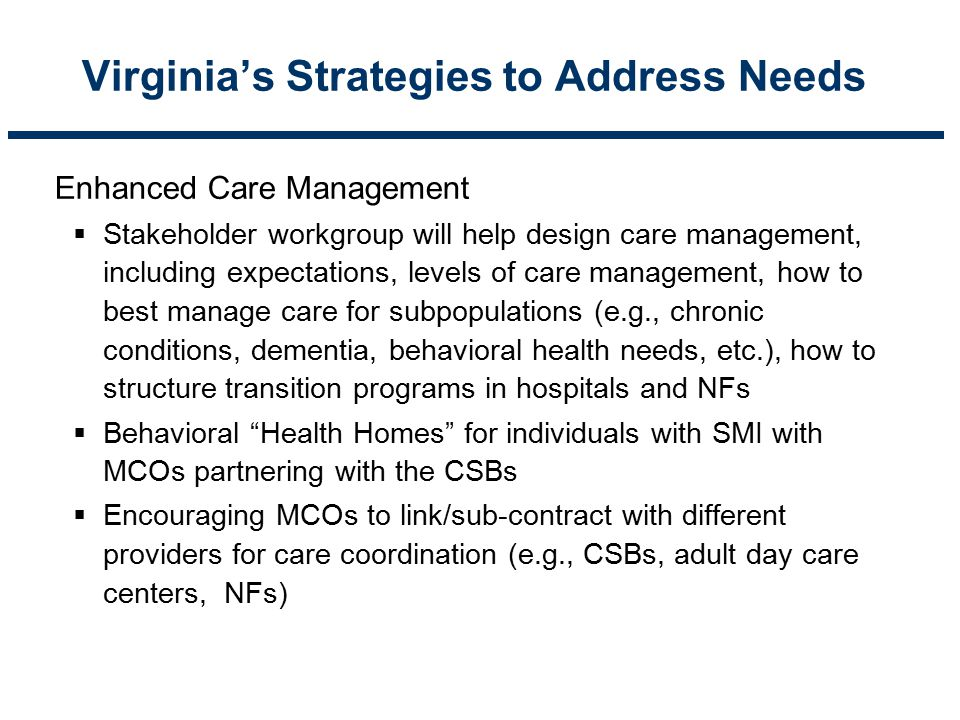 Virginia's Strategies to Address Needs