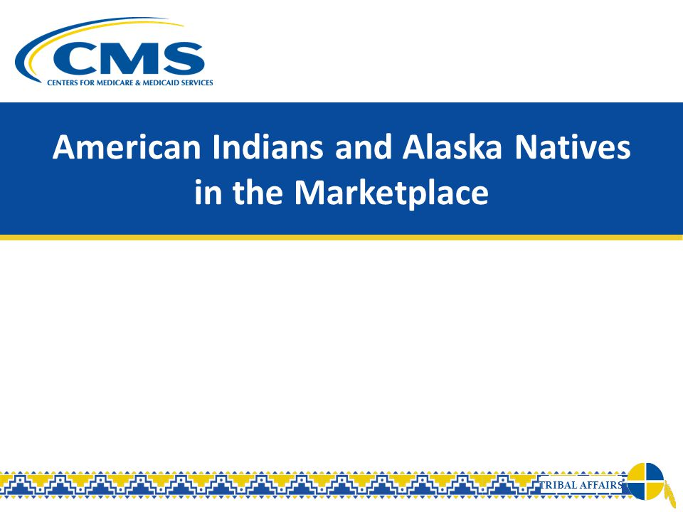 American Indians and Alaska Natives in the Marketplace