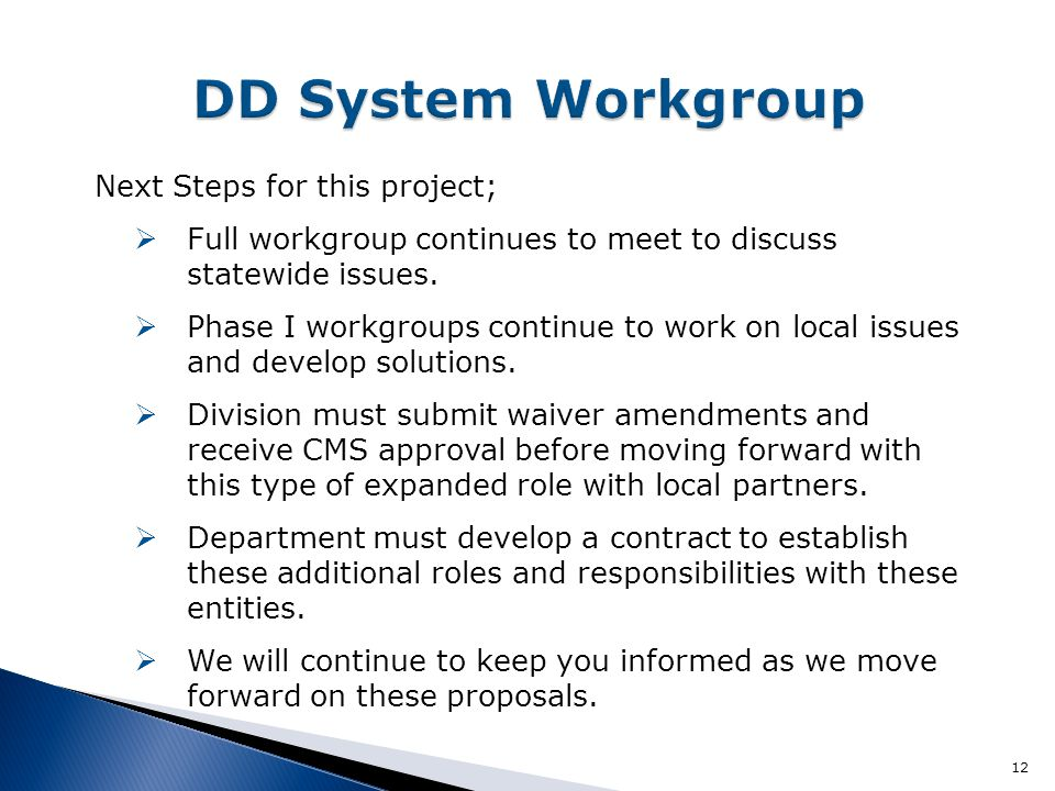 DD System Workgroup Next Steps for this project;