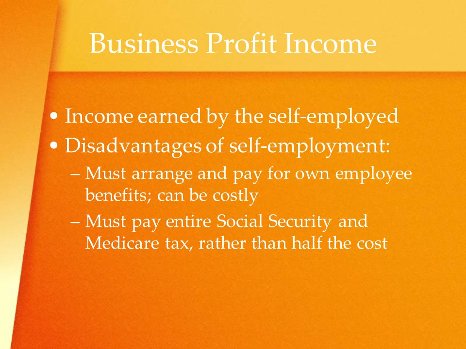 Business Profit Income
