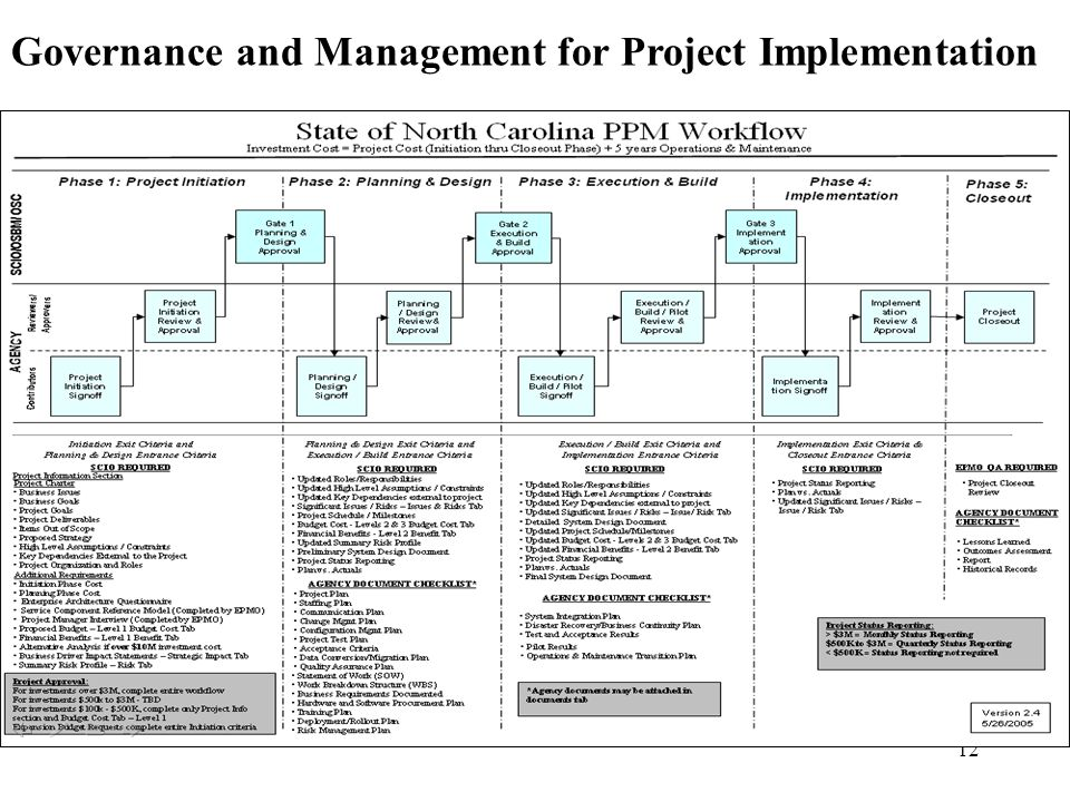 Governance and Management for Project Implementation