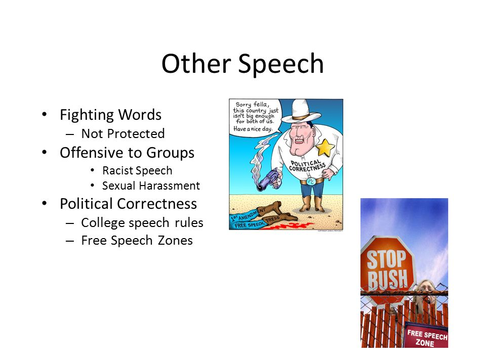 Other Speech Fighting Words Offensive to Groups Political Correctness