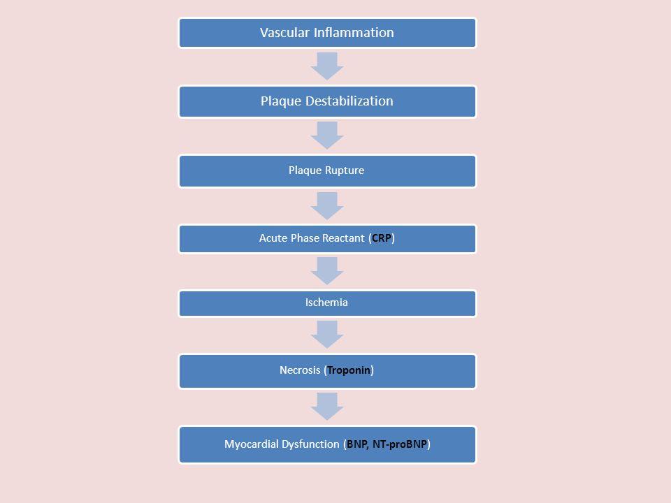 Vascular Inflammation Plaque Destabilization