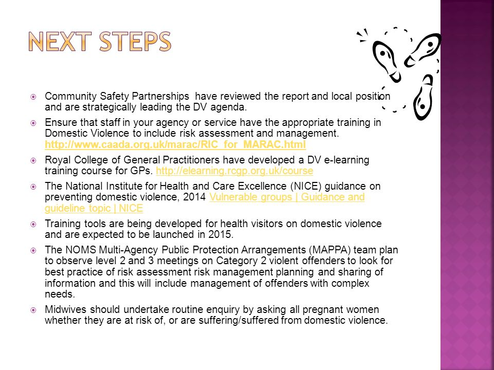 Next steps Community Safety Partnerships have reviewed the report and local position and are strategically leading the DV agenda.