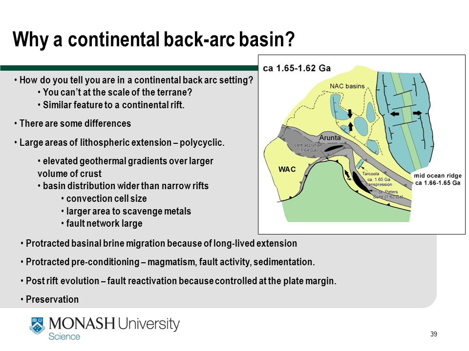 Why a continental back-arc basin