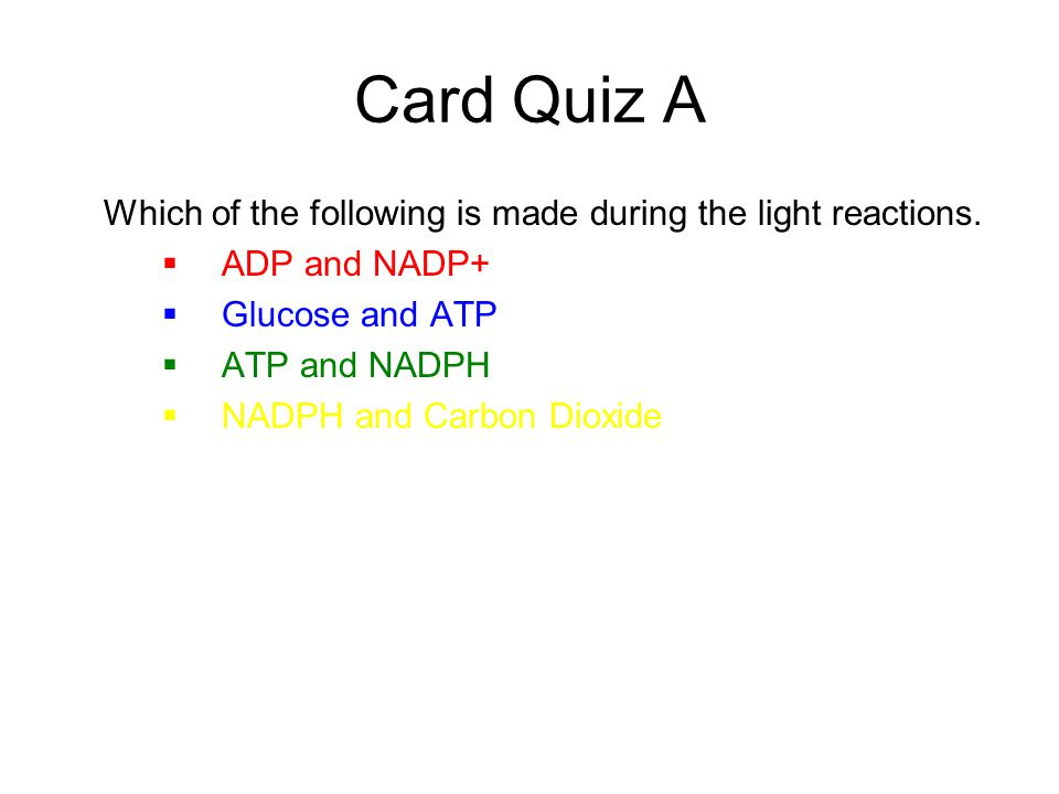 Card Quiz A Which of the following is made during the light reactions.