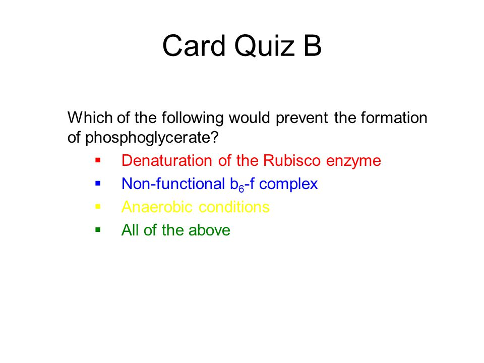 Card Quiz B Which of the following would prevent the formation of phosphoglycerate Denaturation of the Rubisco enzyme.