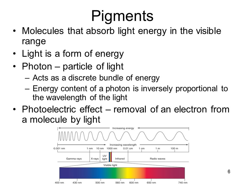 Pigments Molecules that absorb light energy in the visible range
