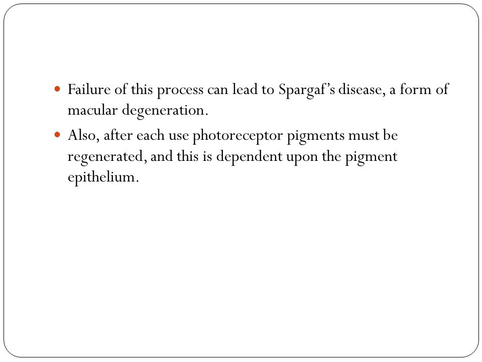 Failure of this process can lead to Spargaf's disease, a form of macular degeneration.