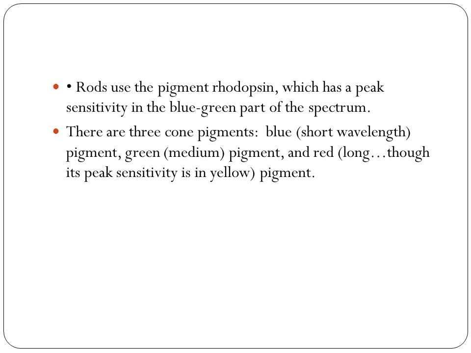 • Rods use the pigment rhodopsin, which has a peak sensitivity in the blue-green part of the spectrum.