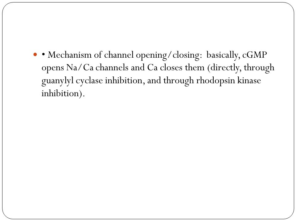 • Mechanism of channel opening/closing: basically, cGMP opens Na/Ca channels and Ca closes them (directly, through guanylyl cyclase inhibition, and through rhodopsin kinase inhibition).