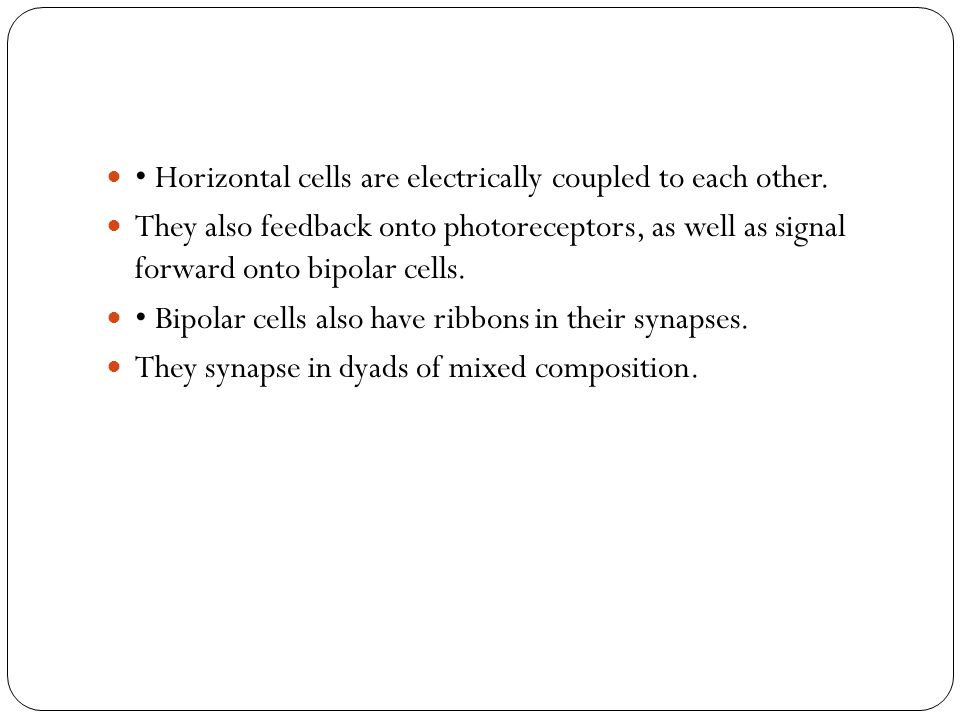 • Horizontal cells are electrically coupled to each other.