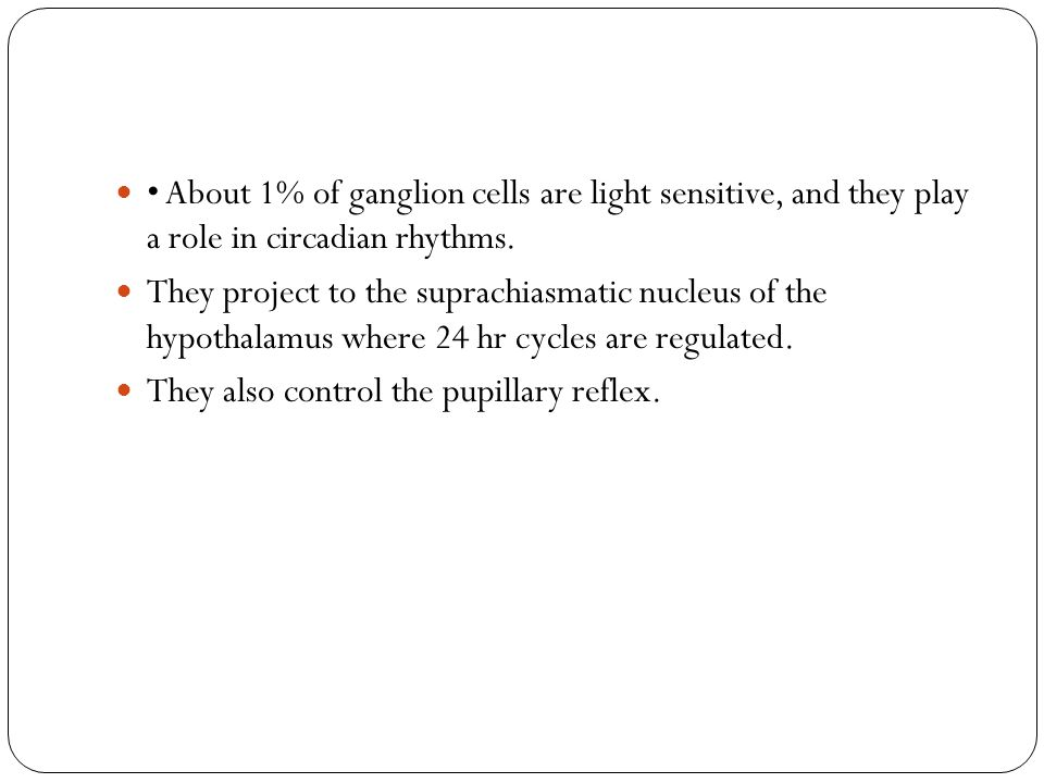 • About 1% of ganglion cells are light sensitive, and they play a role in circadian rhythms.