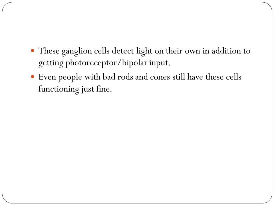 These ganglion cells detect light on their own in addition to getting photoreceptor/bipolar input.