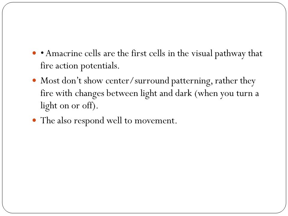 • Amacrine cells are the first cells in the visual pathway that fire action potentials.