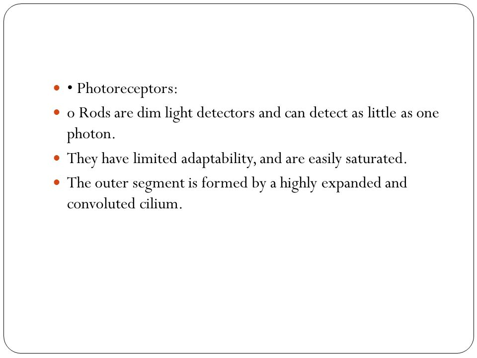 • Photoreceptors: o Rods are dim light detectors and can detect as little as one photon. They have limited adaptability, and are easily saturated.