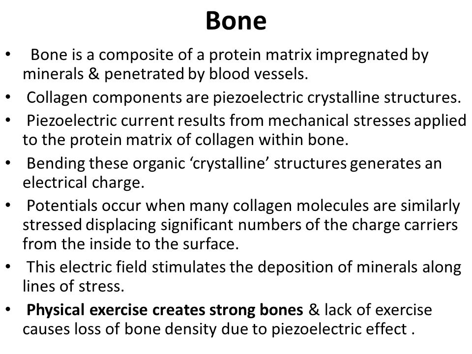 Bone Bone is a composite of a protein matrix impregnated by minerals & penetrated by blood vessels.