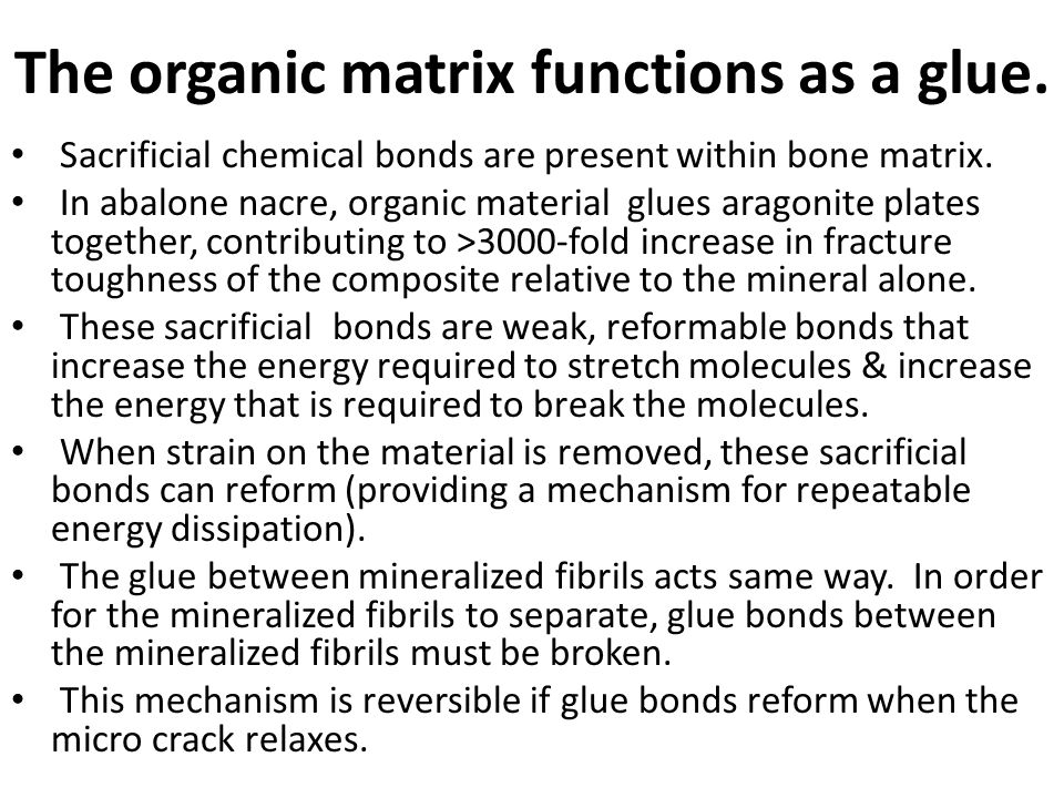 The organic matrix functions as a glue.