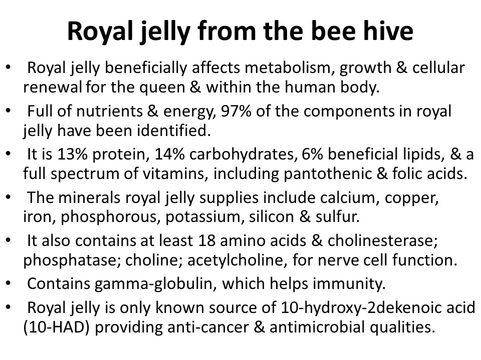 Royal jelly from the bee hive