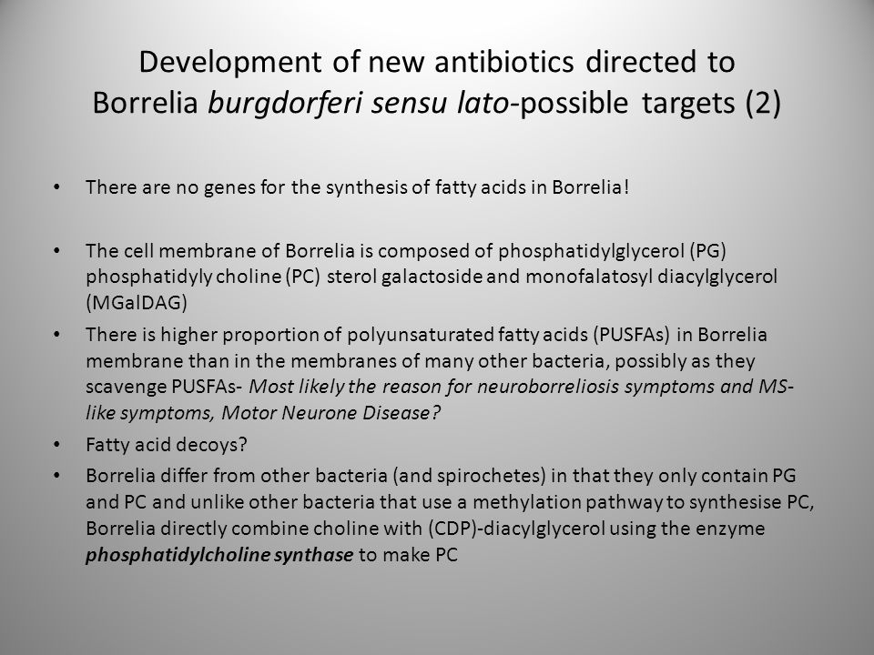 Development of new antibiotics directed to Borrelia burgdorferi sensu lato-possible targets (2)