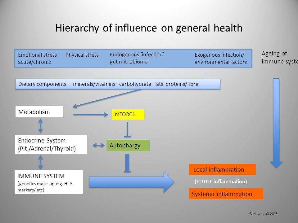 Hierarchy of influence on general health