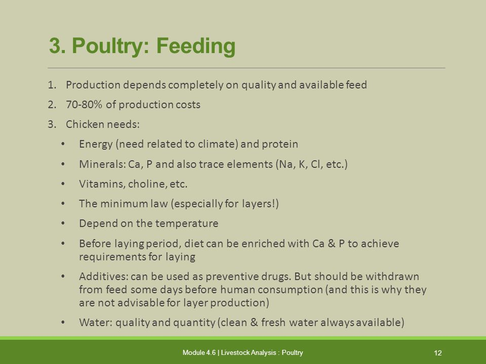 Module 4.6 | Livestock Analysis : Poultry