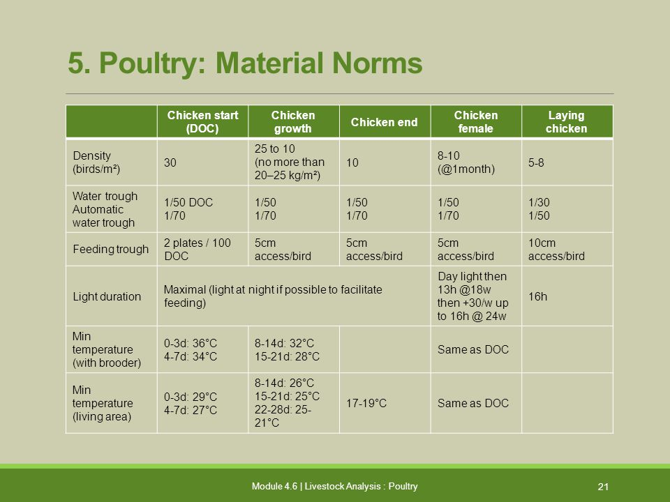 5. Poultry: Material Norms